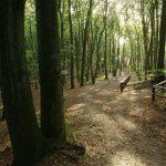 wolinski-park-narodowy